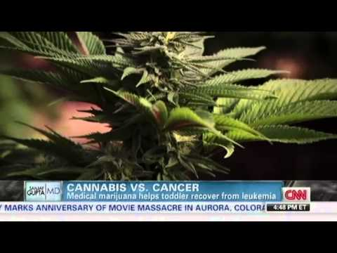 Cannabis vs Cancer Dr. Sanjay Gupta CNN - The CBD Discovery