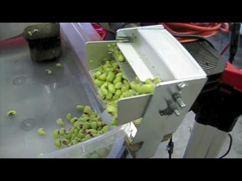how to build an electric pea sheller