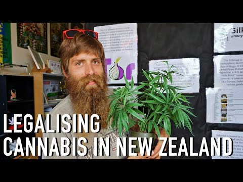 LEGALISING CANNABIS IN NEW ZEALAND | INTERVIEW WITH ABE GRAY