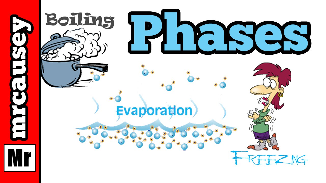 Phases of Matter and the Phase Changes - YouTube