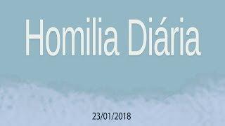 Homilia diária - 23 de janeiro
