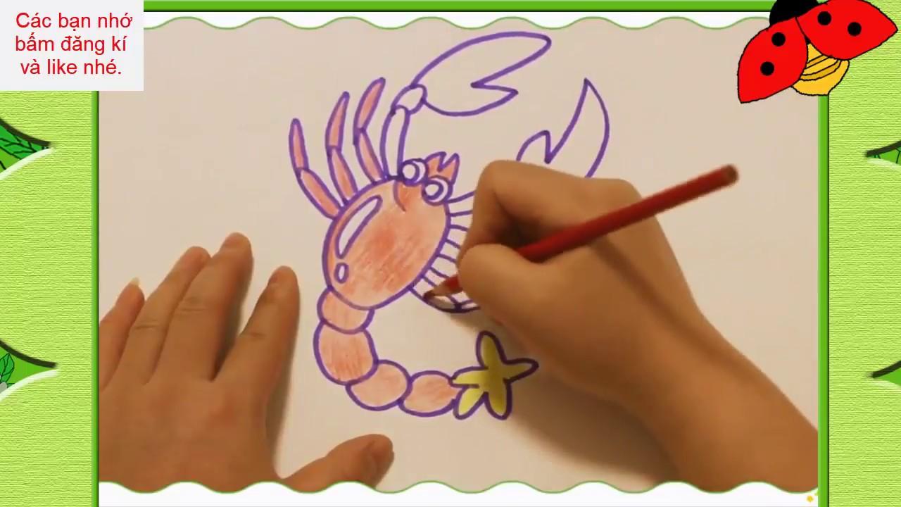 Bé tập vẽ và tô màu con tôm hùm