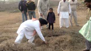 catching snakes by vaid gurbachan singh/con-no 98141-93242