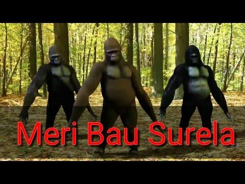funny-bau-surela-monkey-dance-video-2018-|-new-garhwali-funny-video-2018-|-devbhoomi-uttarakhand