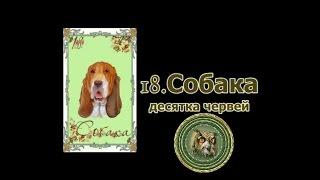 Значение карт Ленорман: Собака
