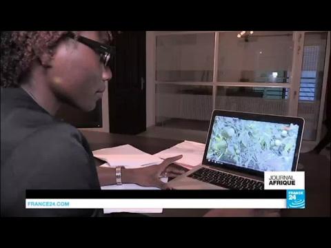 Côte d'Ivoire - agrobusiness : système lucratif ou arnaque ?