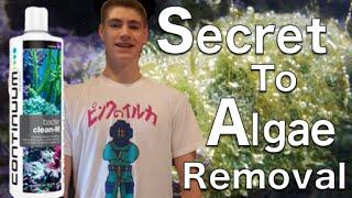 Secret to Remove Any Algae! Bacter Clean-M Continuum Aquatics