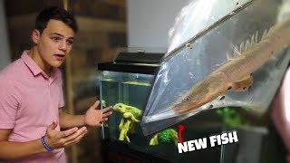 SURPRISING Paul Cuffaro With NEW Fish!