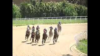 Vidéo de la course PMU OSVALDO URBINA S.