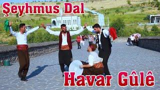 Havar Güle Halay Govend Cida - Şeyhmus Dal - (Video)