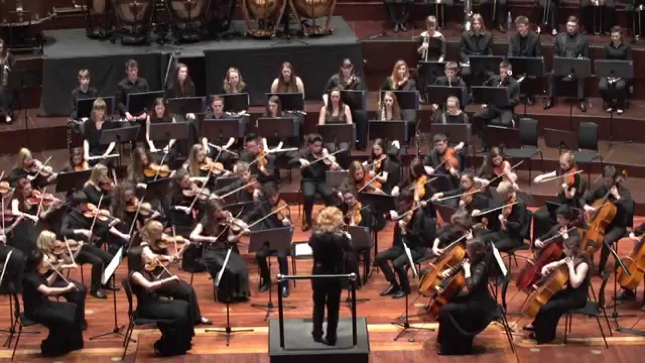 concert orchestra experience Concert orchestra experience essay  introduction the orchestra concert that i had watched and enjoyed was the school concert, which has performed at 25th october 2014, 12:30 pm the concert was conducted at pertronas twin tower (klcc),.