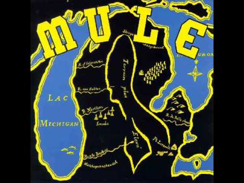 Mule - Mississippi Breaks