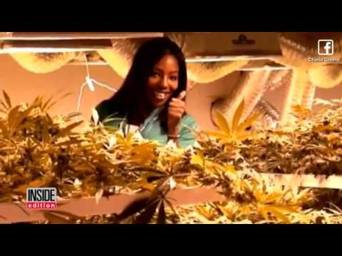 TV Meteorologist Arrested For Growing Marijuana Weed Plants At Her Home!