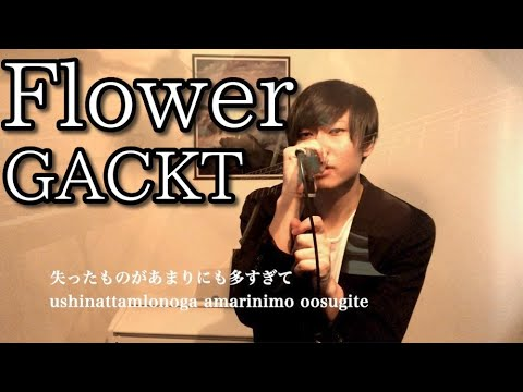 「Flower」/GACKT Acoustic COVER