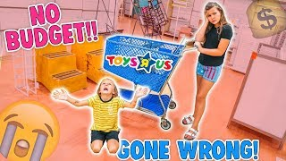 no budget challenge at toys r us 😭 worst day ever slyfox family