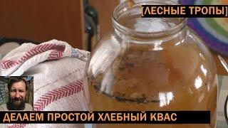 Простой рецепт кваса в домашних условиях из хлеба