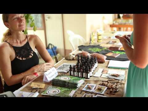 Medicines from the Edge   A Tropical Herbal Convergence   Aguas Zarcas, Costa Rica