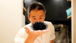 성게의 변신을 보시죠 Sea Urchin Tempura
