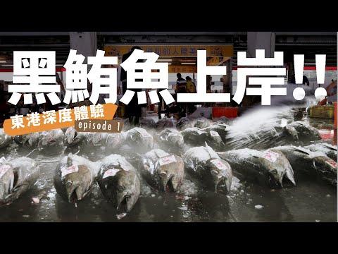 東港鮪魚季!黑鮪魚上岸拍賣到肢解一小時全紀錄!! 屏東東港深度體驗【E家愛吃愛旅遊】