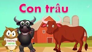 Con bò | Con trâu | Con ngựa | Con dê | em bé học nói con vật tiếng việt | Dạy trẻ thông minh sớm