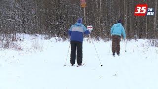 Лыжня или жилая застройка: лыжня здоровья в Череповце последнюю зиму останется прежней