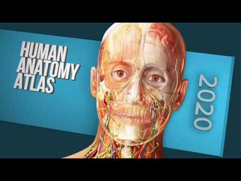 What's In Atlas 2020 Site License? | Human Anatomy Atlas