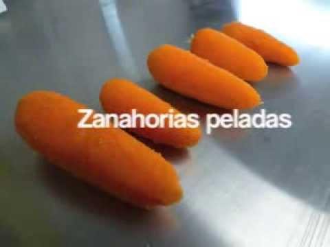 Lavadora - Peladora de Zanahoria / Carrot Peeling Machine
