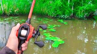 RECORD Day of FROG Fishing! (LOADED w/ GIANT Bass)