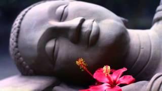 Sanatana Dharma and Buddhism