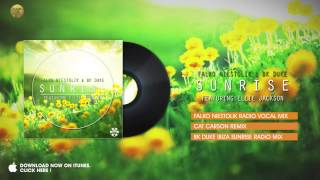 Falko Niestolik & BK Duke feat. Ellie Jackson – Sunrise (Cat Carson Remix)