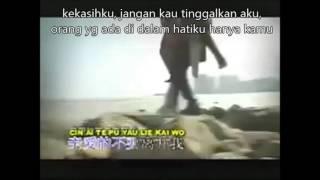 Cin Ai Te Pu Yau Li Kai Wo  (terjemahan) MP3