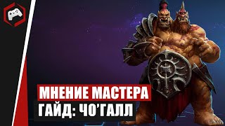 МНЕНИЕ МАСТЕРА: #209 «Holy» (Гайд - ЧоГалл) | Heroes of the Storm