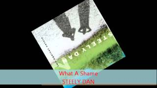 Steely Dan - WHAT A SHAME