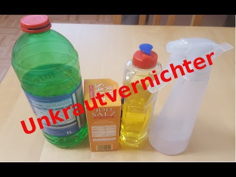 salzwasser gegen unkraut