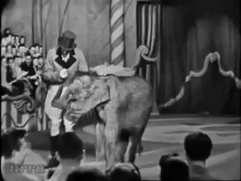 Bobby Freeman Do You Wanna Dance 1958)