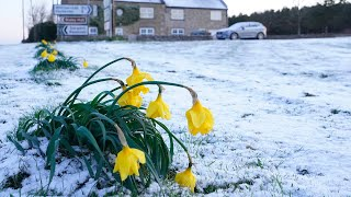 UK snow: Temperatures plummet on Easter Monday as cold snap brings snow