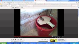 fare tuzağı aydın ilaçlama şirketi, ilaçlama aydın volkan ziraat tel: 0544 516 02 78 Video