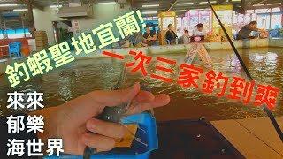 【釣場REVIEW】釣到手發炎!宜蘭朝聖!|來來、郁樂、海世界! | 一次釣三家宜蘭有名的釣蝦場! | 2018/10/21