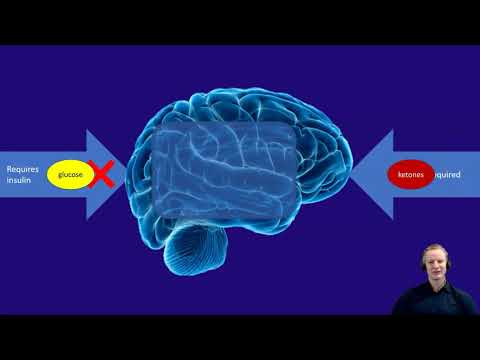 Preventing and treating dementia with diet long version (40 minutes) with commentary.