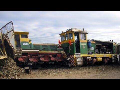 Mishaps and mayhem on the narrow gauge :Cane railways