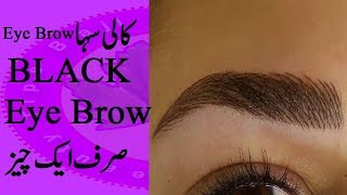 Eyebrow Ko Kala Kaise Kare | Apni Eyebrow Ko Dark Black Kare Bohat He Asani Se