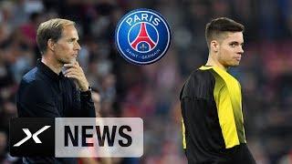 Transfer-News: Thomas Tuchel jagt Julian Weigl und Wendell   Borussia Dortmund   Bayer 04   PSG