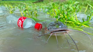 Amazing Bottle Fishing Trap | Hook Fishing at the Village Bill - Beautfull Natural Fishing Video