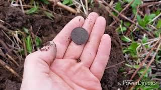 Развалины Японского Храма. Нашел 35 монет. Коп на Сахалине, Невельск. Sakhalin