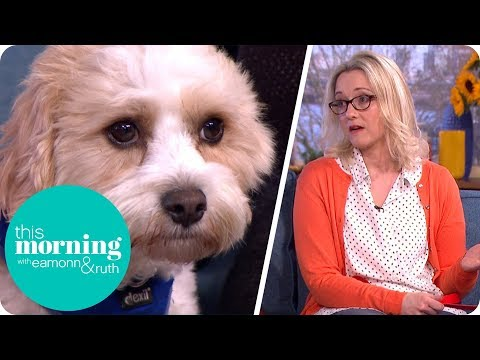 The Horrors Of Puppy Farming   This Morning