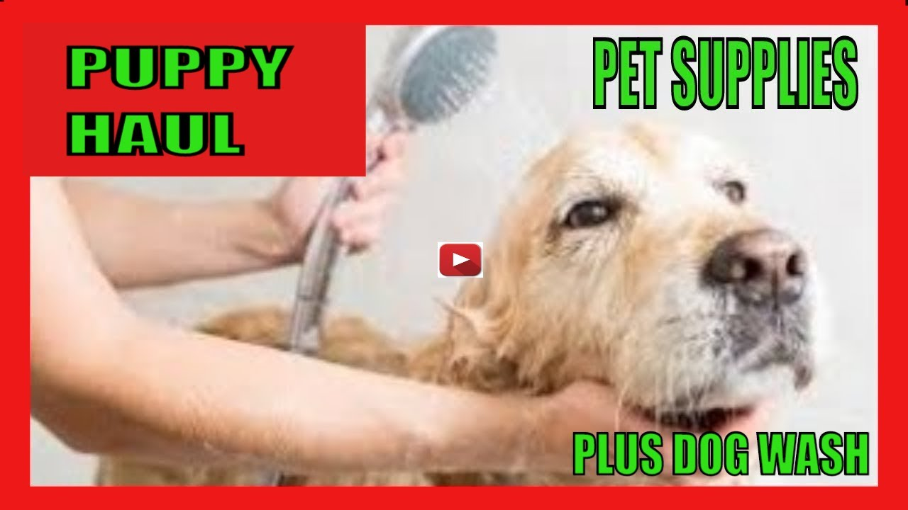 SELF SERVICE DOG WASH: PET SUPPLIES PLUS DOG WASH TOYS & GADGETS YOU MUST HAVE