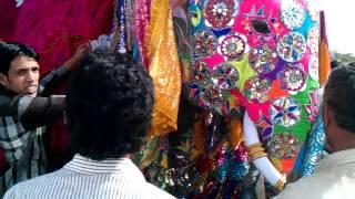 elephant festival jaipur, elephant festival, jaipur elephant festival