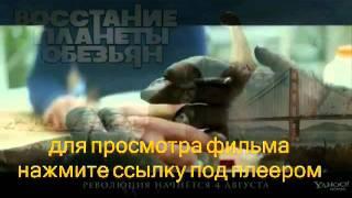 Восстание планеты обезьян / Rise of the Apes (2011) трейлер