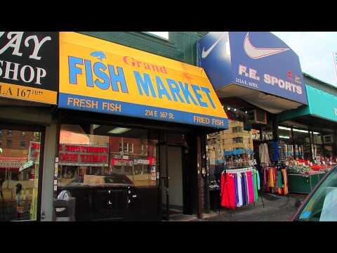 ^MuniNYC - East 167th Street & Grand Concourse (Highbridge, Bronx 10456)