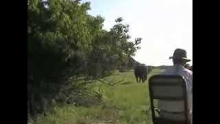 CMMTV- Reisevideos: Okavango - Perle Botswanas